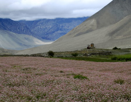 [Annapurna Circuit] cz. 8: Muktinath – Jomsom