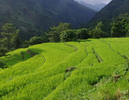 [Annapurna Circuit] cz. 1: Besisahar – Chyamche